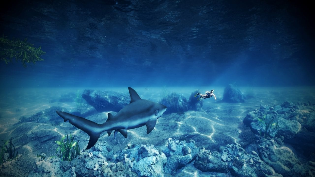 Maneater Tiger Shark Skin
